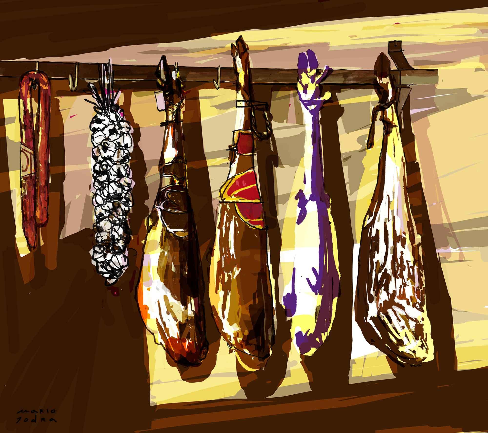 Hanging ham - Jamones colgados - Mario Jodra illustration ilustración